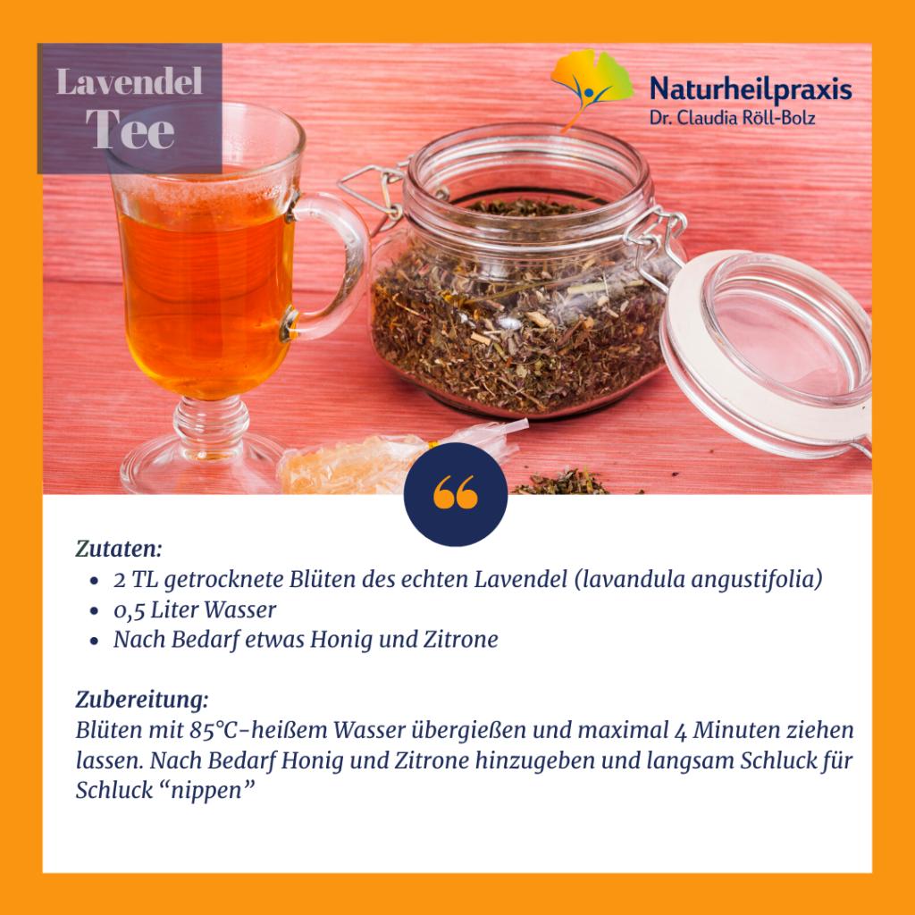 Lavendel Heilpflanze Dr.Röll-Bolz
